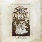 Play & Download Sempiternal Past by Darkthrone | Napster