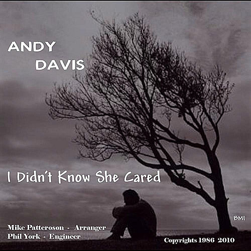 Play & Download I Didn't Know She Cared by Andy Davis | Napster