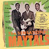 Play & Download The Sensational Maytals by The Maytals | Napster
