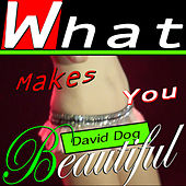 Play & Download What Makes You Beautiful by David Dog | Napster