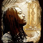 Book Of Life by I Wayne