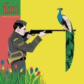 Aim and Ignite von fun.