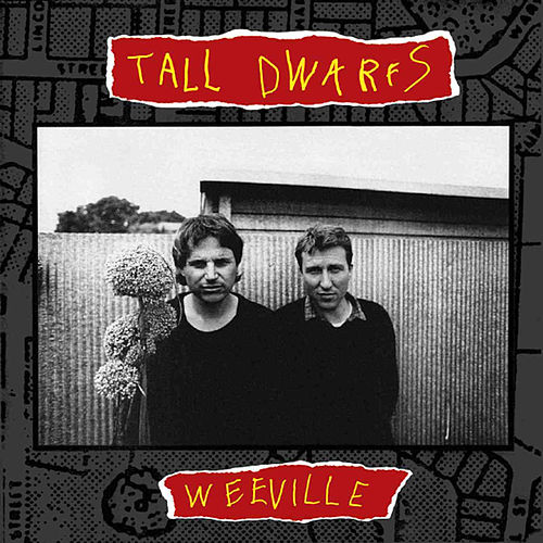 Play & Download Weeville by Tall Dwarfs | Napster
