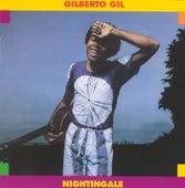 Nightingale by Gilberto Gil
