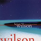 Play & Download Imagination by Brian Wilson | Napster
