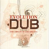Play & Download The Evolution Of Dub Vol. 1: The Origin by Various Artists | Napster