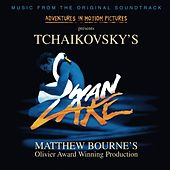 Swan Lake [Matthew Bourne version] by David Lloyd-Jones