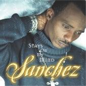 Stays On My Mind by Sanchez