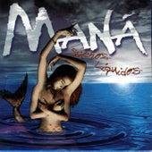 Play & Download En el Muelle de San Blas / Selva Negra by Maná | Napster