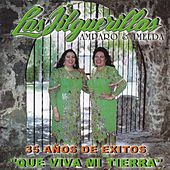 Play & Download Que Viva Mi Tierra by Las Jilguerillas | Napster