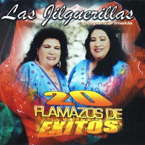 Play & Download 20 Flamazos De Exitos by Las Jilguerillas | Napster
