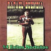 Play & Download 14 Exitos Nortenos by Rafael Buendia | Napster