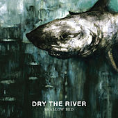 Play & Download Shallow Bed by Dry The River | Napster