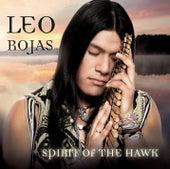 Spirit Of The Hawk von Leo Rojas