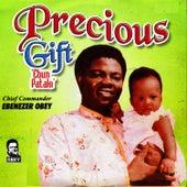Precious Gift (Ebun Pataki) by Ebenezer Obey