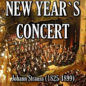 New Year's Concert by Italian Orchestra