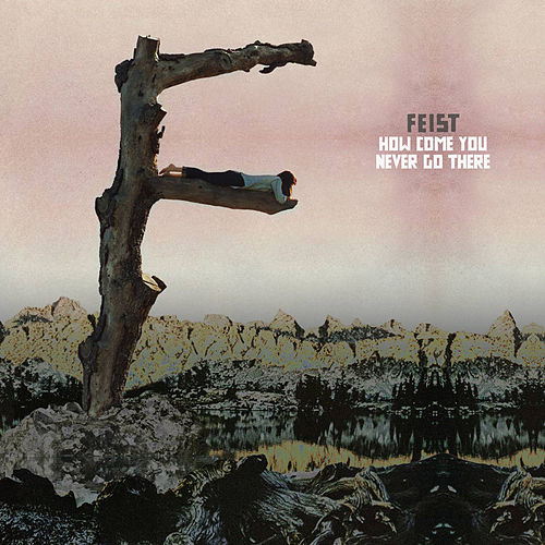 How Come You Never Go There von Feist