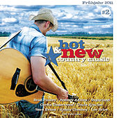 Hot & New Country Music Vol. 2 von Various Artists