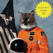 Surfing The Void von Klaxons