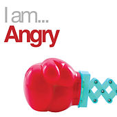 I Am Angry von Various Artists