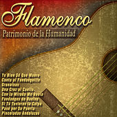 Play & Download Flamenco - Patrimonio de la Humanidad by Various Artists | Napster