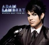Whataya Want From Me von Adam Lambert