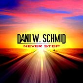 Never Stop by Dani W. Schmid