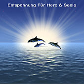 Play & Download Entspannung Für Herz & Seele - Yoga, SPA , Wellness Musik by Meister der Entspannung und Meditation | Napster