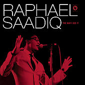 The Way I See It von Raphael Saadiq
