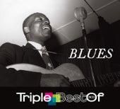 Triple Best Of Blues von Various Artists