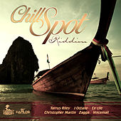 Play & Download Chill Spot Riddim by Various Artists | Napster