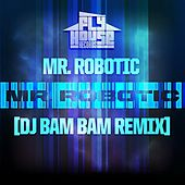 Play & Download Mr.Robotic (DJ Bam Bam Radio Remix) - Single by Mr. Robotic | Napster