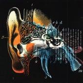 Listening Cap by Liquorice