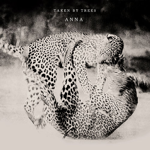 Play & Download Anna by Taken By Trees | Napster