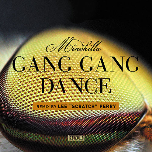 MindKilla (Lee Scratch Perry Remix) by Gang Gang Dance