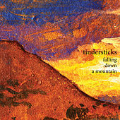 Falling Down A Mountain de Tindersticks