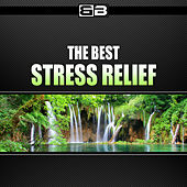 Play & Download The Best Stress Relief by Various Artists | Napster