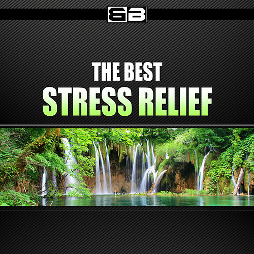 The Best Stress Relief by Various Artists