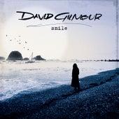 Smile von David Gilmour