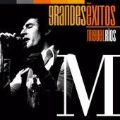 Play & Download Grandes Éxitos: Miguel Ríos by Miguel Rios | Napster