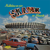 Play & Download Multishow Ao Vivo - Skank no Mineirão by Skank | Napster