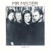 The Best Of van Mr. Mister