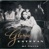 Mi Tierra von Gloria Estefan