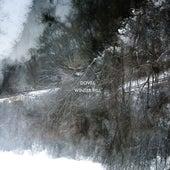Winter Hill von Doves