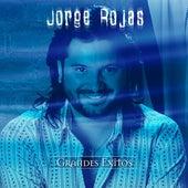 Serie De Oro by Jorge Rojas