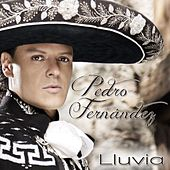 Play & Download Lluvia by Pedro Fernandez | Napster
