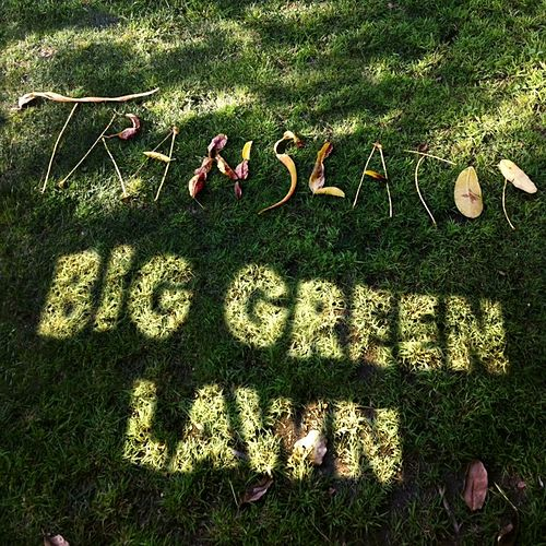 Play & Download Big Green Lawn by Translator | Napster