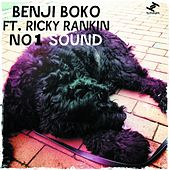 Play & Download No.1 Sound (feat. Ricky Rankin) [Remixes] by Benji Boko | Napster