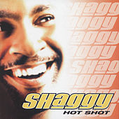 Hot Shot by Shaggy