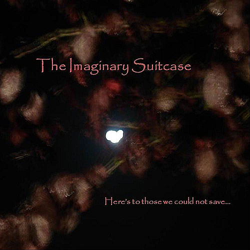Play & Download Here's to Those We Could Not Save by The Imaginary Suitcase | Napster
